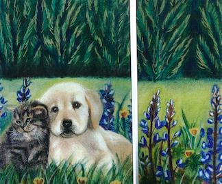 Screen shot cat and dog 64baada6 5e27 4390 809f a8b0b5915dd0
