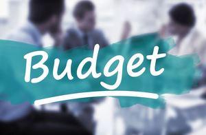 Budget cropped 75b4f253 d520 48e4 9ebc aebd25ad864a