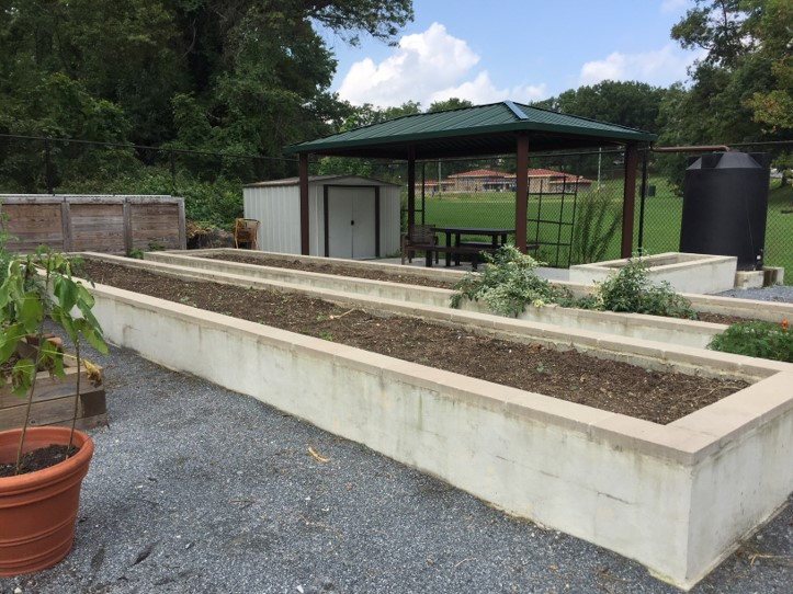 Picture of Langdon Community Garden in Washington D.C.